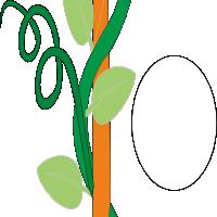 Liana with tendrils