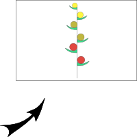 Raceme with alternate sessile flowers