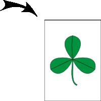 Trifoliate leaf 2
