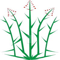 Tuft plant with narrow leaves